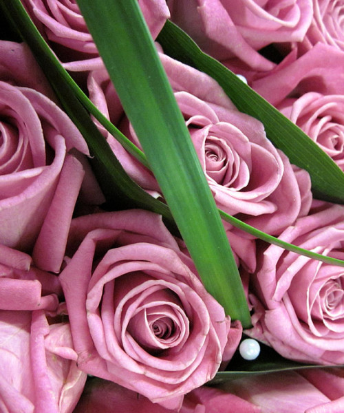 kukat merkkipäiviksi